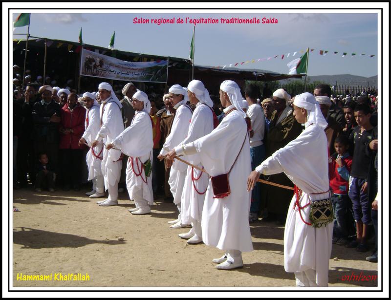 SAIDA:Salon régional de l'équitation traditionnelle 111101051636436768990256