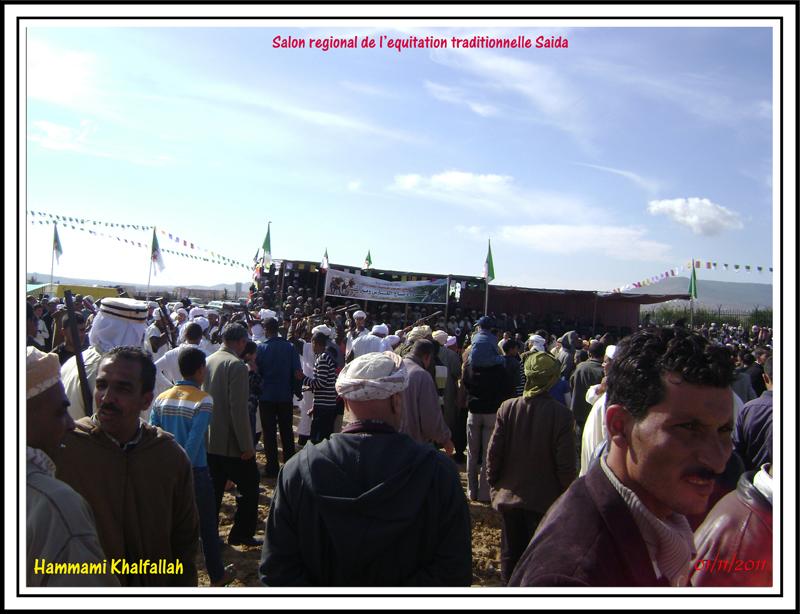 SAIDA:Salon régional de l'équitation traditionnelle 111101051636436768990257