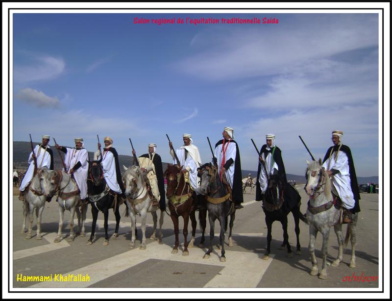 SAIDA:Salon régional de l'équitation traditionnelle 111101051638436768990269