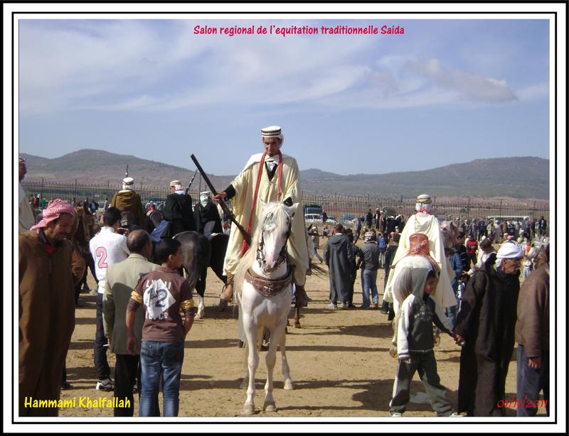 SAIDA:Salon régional de l'équitation traditionnelle 111101051638436768990270
