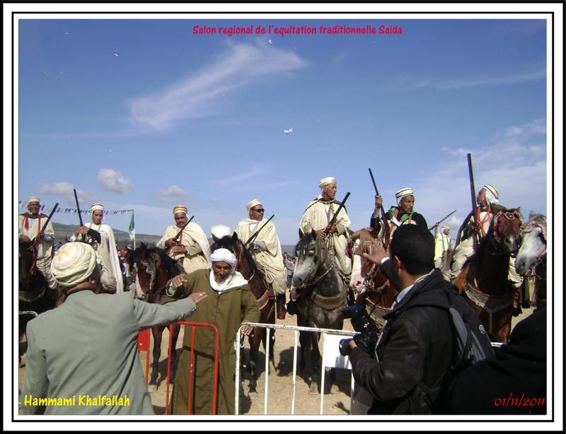 SAIDA:Salon régional de l'équitation traditionnelle 111101051638436768990271