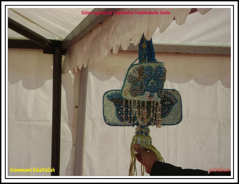 SAIDA:Salon régional de l'équitation traditionnelle 111101051638436768990274