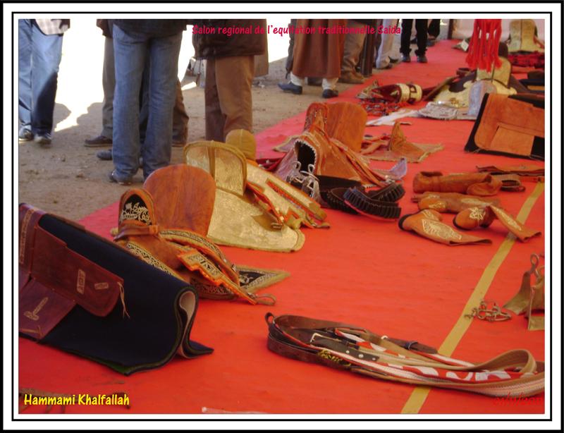 SAIDA:Salon régional de l'équitation traditionnelle 111101052746436768990326