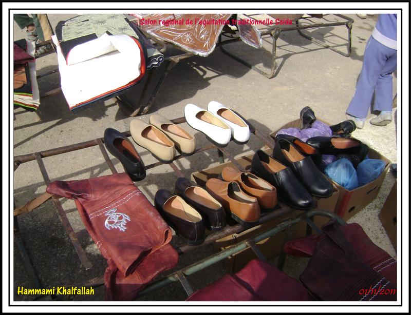 SAIDA:Salon régional de l'équitation traditionnelle 111101052747436768990328