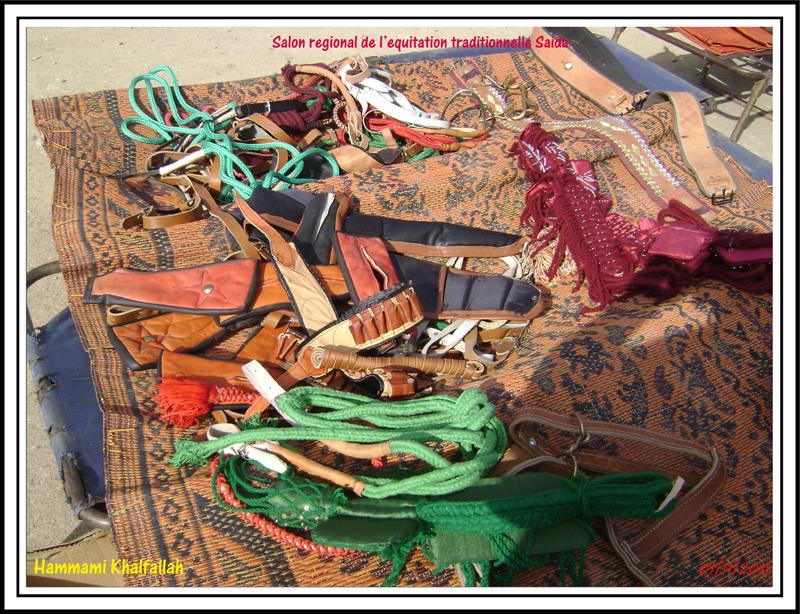 SAIDA:Salon régional de l'équitation traditionnelle 111101052747436768990330