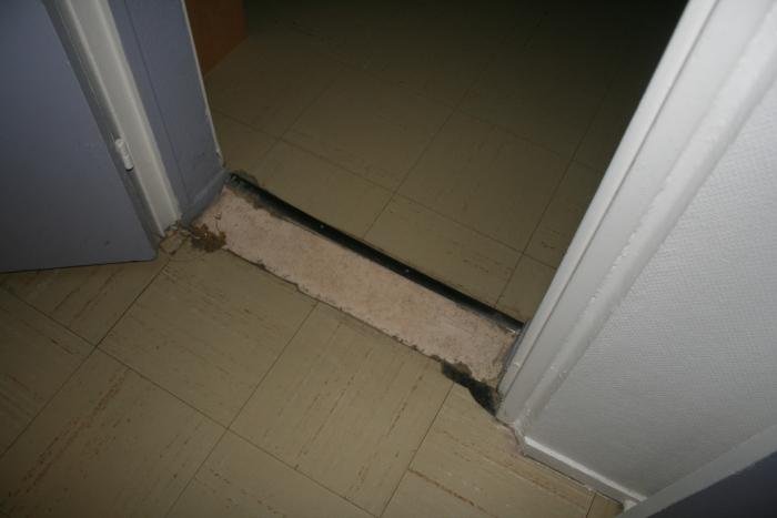 http://nsm06.casimages.com/img/2011/11/27/111127114738390119102380.jpg