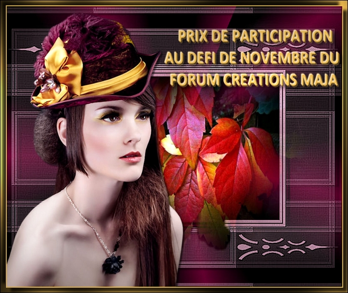 PARTICIPATIONNOVEMBRE